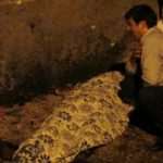 Suicide bomber at Turkish wedding was as young as 12, president announces