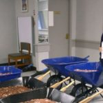 Man delivers 298,745 pennies to DMV