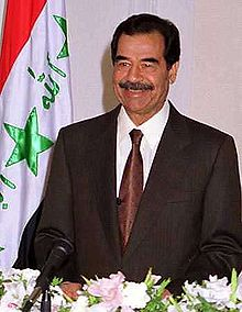 Saddam BUSTED for Being Bin Laden!