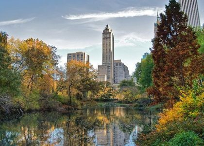 2 DEAD BODIES IN 2 DAYS FOUND FLOATING IN CENTRAL PARK PONDS