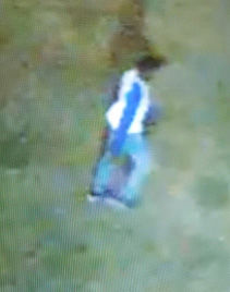 Police release surveillance photo of suspected Virginia State University shooting suspect dropping gun on campus