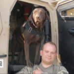 K-9 Medal of Courage Award Bestowed on Five Military Dogs